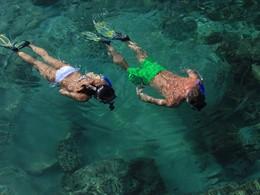 À la découverte des fonds marins d'Oman