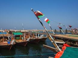 Découvrez l'art de la pêche au Sultanat d'Oman