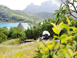 Le Sofitel Bora Bora est situé au coeur d'une nature préservée et sauvage