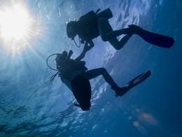 Explorez les exceptionnels fonds marins