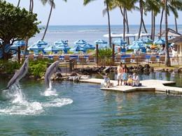 Partez à la rencontre des dauphins à l'hôtel Kahala