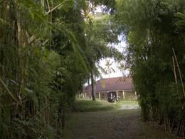 Sentier menant à la villa