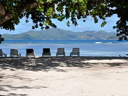 La plage ombragée