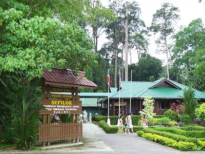 Centre de réadaptation orangs-outangs de Sepilok