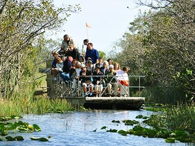 Découverte des Everglades en hydroglisseur (en rdv sur place)