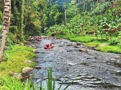 Descente de la Rivière Ayung en Rafting
