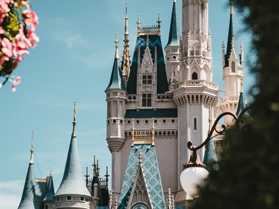 Disneyland Park (1jour)