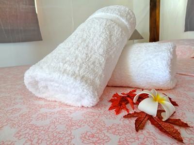 Bungalow Plage de l'hôtel Havaiki Lodge Fakarava en Polynésie