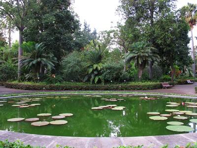 Jardin d'Acclimatation de La Orotava