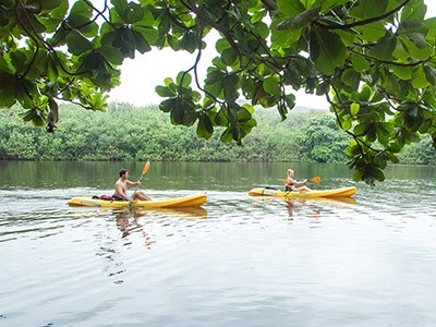 Kayak sur la rivière Hanalei