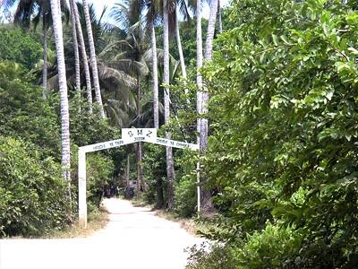 La forêt de Jozani