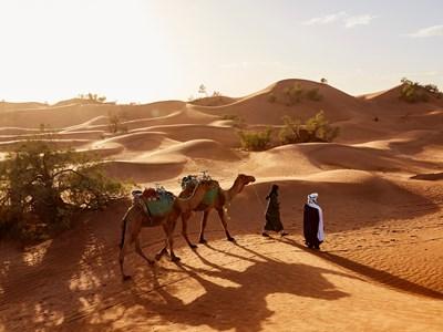 Voyages sur mesure au Maroc