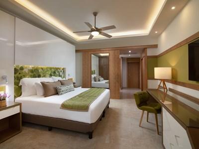 Premium Junior Suite Tropical View