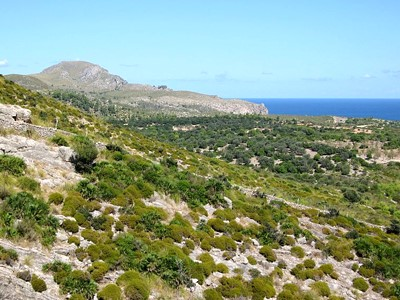 Parc naturel de la presqu'île du Llevant