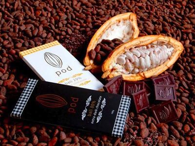 Sur la route du chocolat