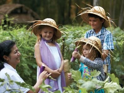 Vacances en famille à Ubud