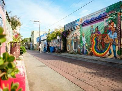 Visite guidée des Painted Ladies au quartier hippie