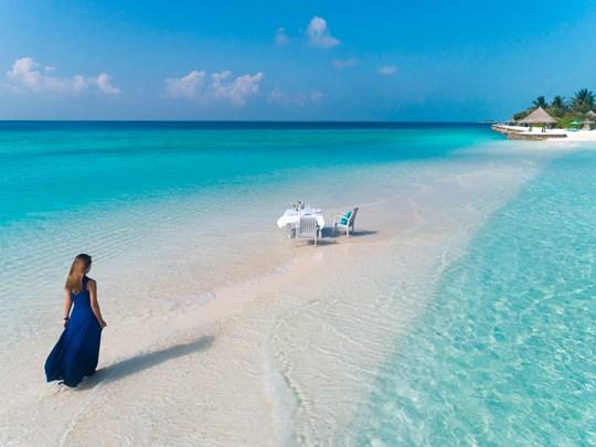 Profitez d'un repas sur les bancs de sable