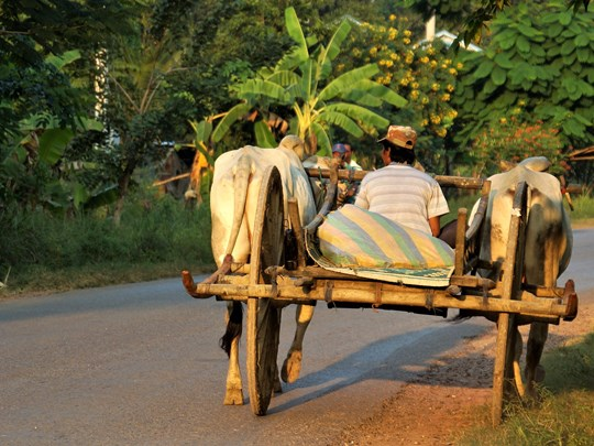 Séjour à Battambang