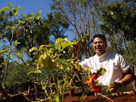 Le potager du Chable est cultivé selon la tradition maya