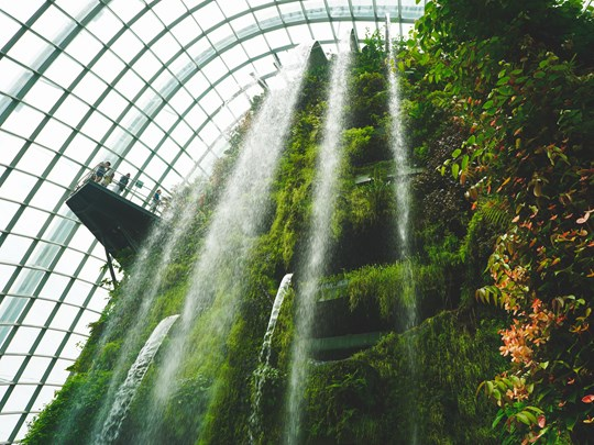 La cascade de la Cloud Forest