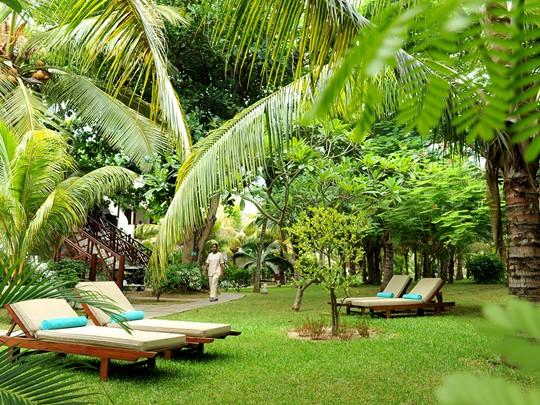 Le jardin verdoyant de l'hôtel
