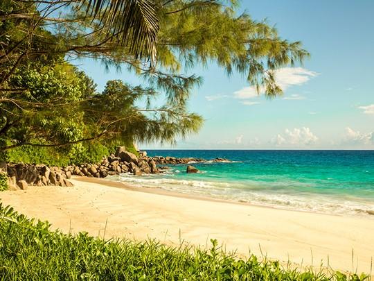 La plage principale de l'établissement Carana Beach à Mahé