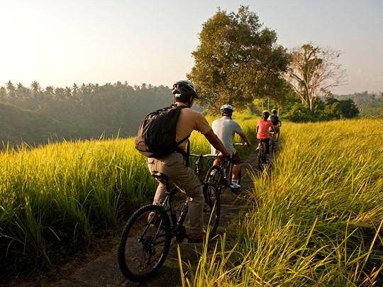 Balade dans les rizières à proximité de l'Uma by Como