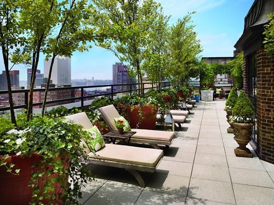 Le rooftop de l'hôtel Hudson à New York