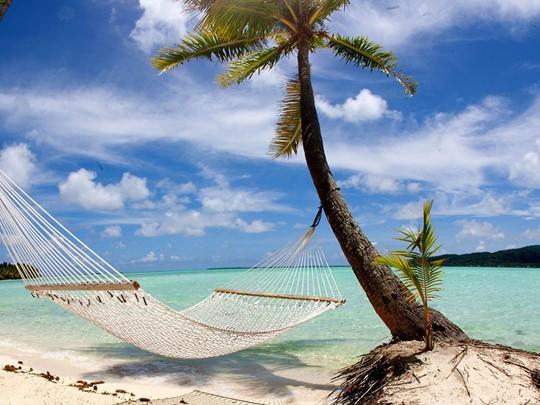 L'île de Taha'a vous séduira par sa nature généreuse