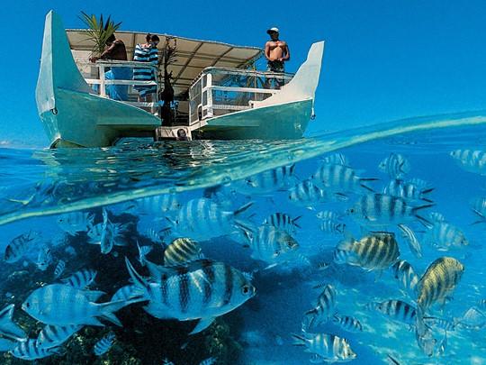Les fonds marins fascinants de Bora Bora