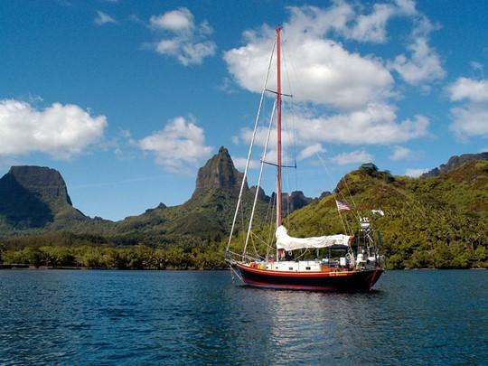 Admirez les sublimes baies de Cook et d'Opunohu