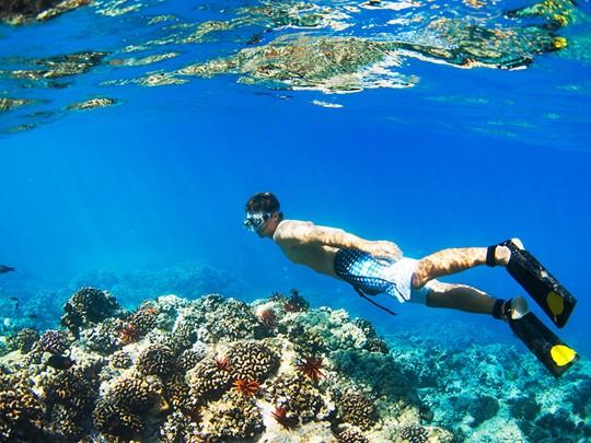 Les snorkelers seront éblouis par certains des meilleurs sites d'Indonésie.