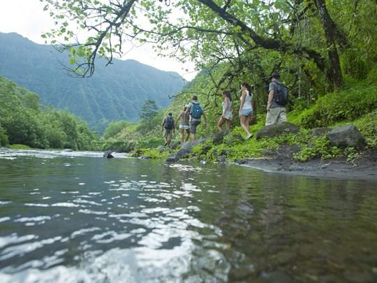 Découvrez la jungle luxuriante de Tahiti