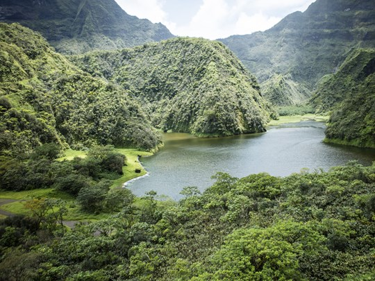 Découvrir des paysages enchanteurs de Tahiti