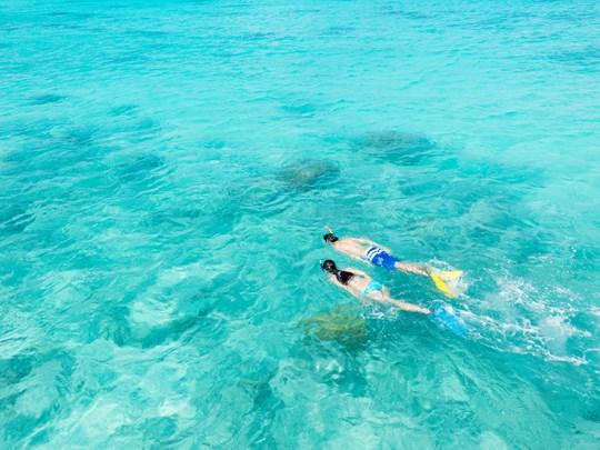 Rangiroa est un paradis pour les passionnés de snorkeling