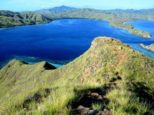 Le superbe parc national de Komodo