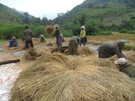 Visite de Ban Phavie, un village Khamu situé au sommet d'une colline