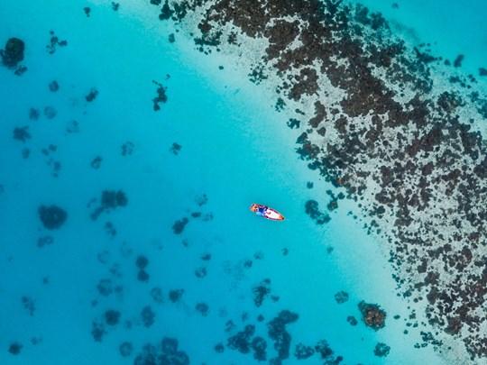 Vue sur la barrière de corail