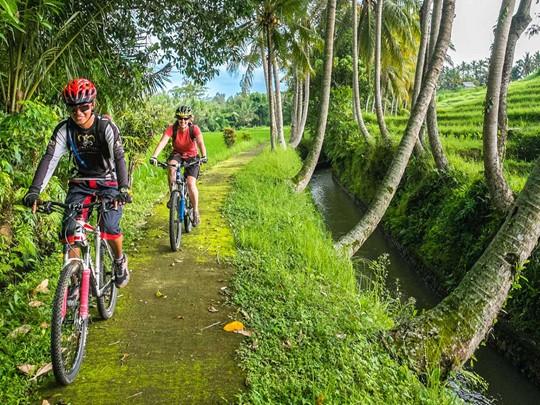 Enfourchez votre vélo pour une escapade de quelques heures dans la superbe campagne d'Ubud