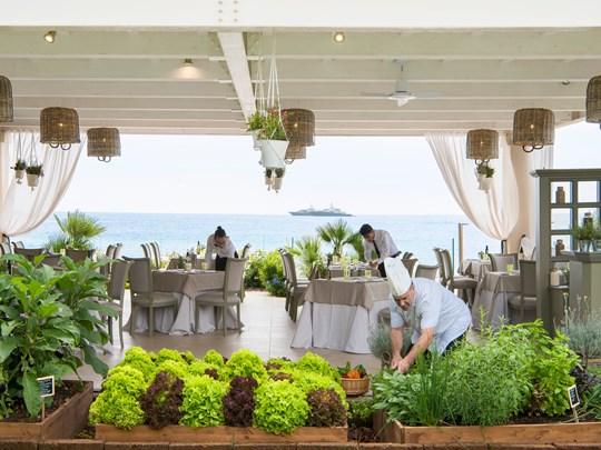 Le Restaurant Orto Scatta et son potager privatif