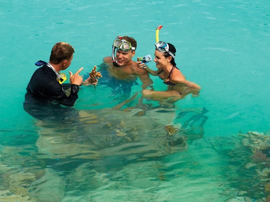 Explorez les exceptionnels fonds marins de Bora Bora