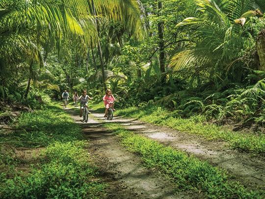 Promenez vous au cœur de la végétation tropicale