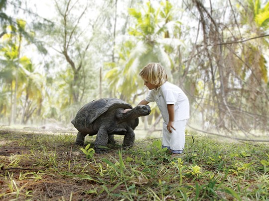 A la rencontre de la faune sauvage