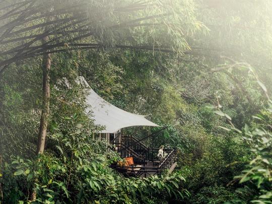 Les tentes du Four Seasons sont nichées en plein coeur d'une jungle tropicale