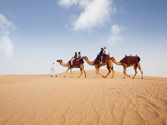 Des instants uniques lors d'une balade à dos de chameau