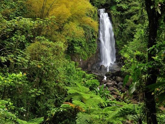 Séjour à la Guadeloupe