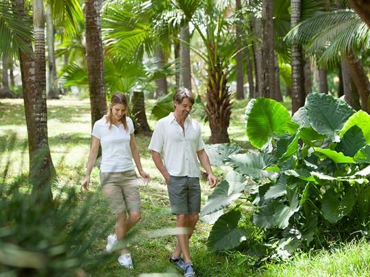 Balade dans le jardin verdoyant
