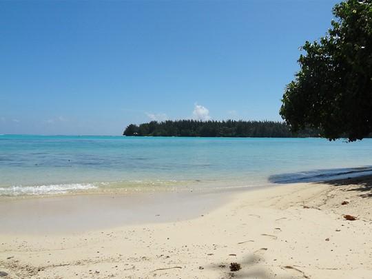 La plage de l'hôtel Hibiscus situé à Moorea
