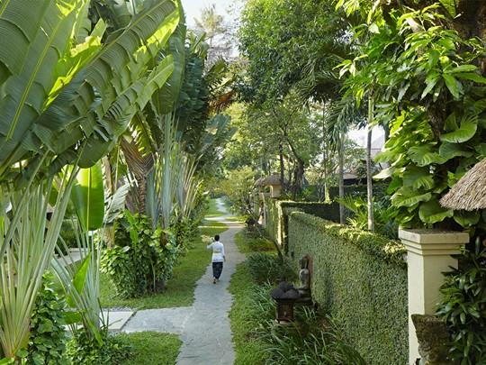 Sentiers de l'hôtel